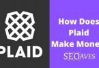 Plaid Business Model